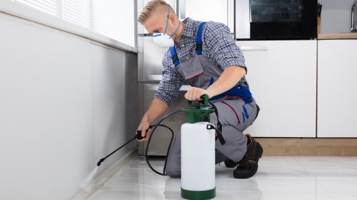 How To Choose The Best Commercial Pest Control Company